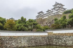 姫路城 兵庫県姫路市の写真素材 [FYI04603124]