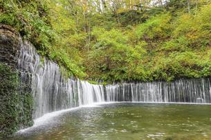 白糸の滝 長野県軽井沢町の写真素材 [FYI04603156]