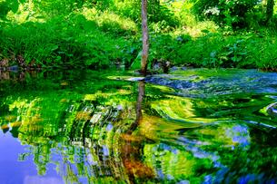 川の映り込みの写真素材 [FYI04603178]