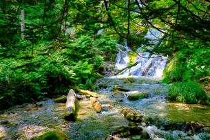 不動の滝の写真素材 [FYI04603180]