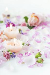 バラとキャンドルの写真素材 [FYI04603353]