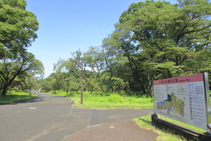 都立小金井公園の写真素材 [FYI04603405]