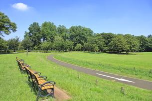 都立小金井公園の写真素材 [FYI04603409]