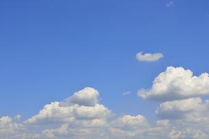 青空と綿雲の写真素材 [FYI04603437]