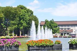 上野公園の噴水と博物館の写真素材 [FYI04603446]