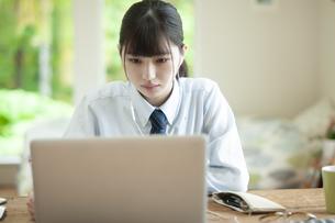オンライン学習を受ける女子学生の写真素材 [FYI04603756]