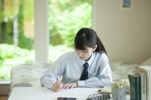 家庭学習をする女子学生の写真素材 [FYI04603785]