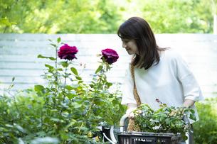 ガーデンショップで買い物をするミドルの女性の写真素材 [FYI04603959]