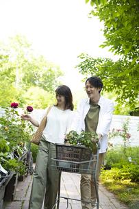 ガーデンショップで買い物をするミドルのカップルの写真素材 [FYI04603970]