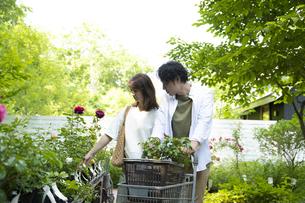 ガーデンショップで買い物をするミドルのカップルの写真素材 [FYI04603971]