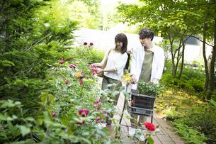 ガーデンショップで買い物をするミドルのカップルの写真素材 [FYI04603973]