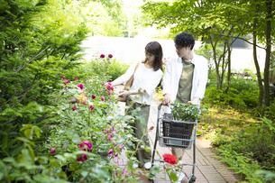 ガーデンショップで買い物をするミドルのカップルの写真素材 [FYI04603974]
