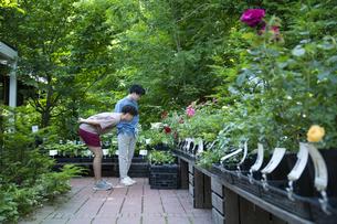 ガーデンショップで買い物をする若い男性の写真素材 [FYI04603975]