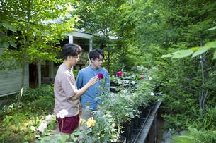 ガーデンショップで買い物をする若い男性の写真素材 [FYI04603978]