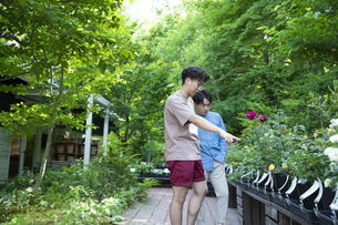 ガーデンショップで買い物をする若い男性の写真素材 [FYI04603979]
