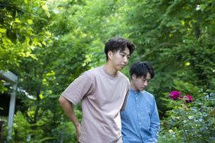 ガーデンショップで買い物をする若い男性の写真素材 [FYI04603980]