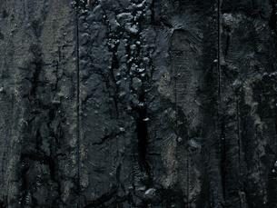 タールの壁の写真素材 [FYI04604478]