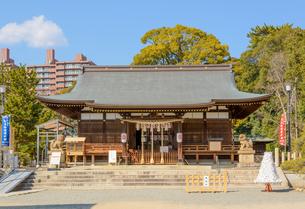 関西の神社仏閣 神戸市 弓弦羽神社の写真素材 [FYI04604536]