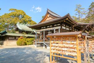 関西の神社仏閣 神戸市 弓弦羽神社の写真素材 [FYI04604537]