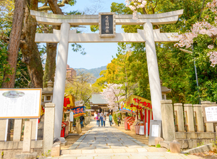 関西の神社仏閣 神戸市 弓弦羽神社の写真素材 [FYI04604539]
