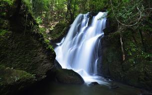 夏の鶏鳴の滝の写真素材 [FYI04604755]