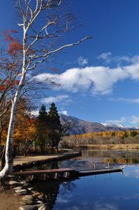 晩秋のいもり池の写真素材 [FYI04604976]
