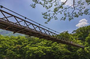 青空に架かる吊り橋の写真素材 [FYI04605070]