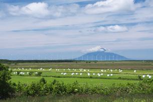 牧草ロールと風力発電と利尻島の写真素材 [FYI04605371]