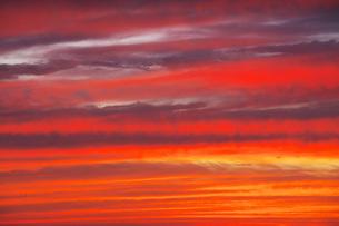 夕景の写真素材 [FYI04605373]