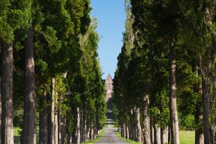トラピスト修道院とポプラ並木の写真素材 [FYI04605401]