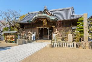 関西の神社仏閣 明石市 柿本神社の写真素材 [FYI04605425]
