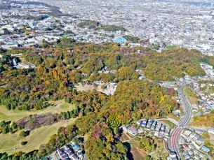 川崎生田緑地空撮の写真素材 [FYI04605454]