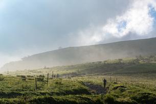 朝霧の車山高原の写真素材 [FYI04605926]