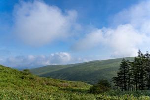朝霧の車山高原の写真素材 [FYI04605993]