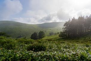 朝霧の車山高原の写真素材 [FYI04605995]