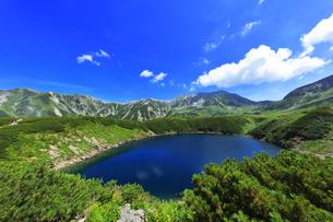 花咲く夏の立山 ミクリガ池と雄山などの山々の写真素材 [FYI04606074]