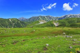 夏の立山 天狗山より剣岳などの山々の写真素材 [FYI04606078]