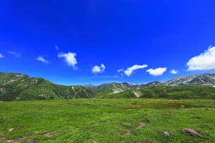 夏の立山 天狗平より剣岳などの山々の写真素材 [FYI04606080]