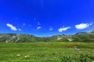 夏の立山 天狗平より剣岳などの山々の写真素材 [FYI04606082]
