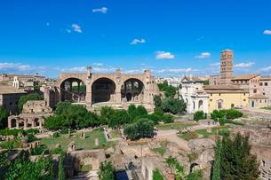パラティーノの丘からフォロロマーノを俯瞰の写真素材 [FYI04606096]