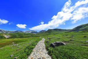 夏の立山 天狗平より雄山などの山々と高原バスの写真素材 [FYI04606130]