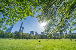 新緑が生い茂るセントラルパークの芝生の広場 シープメドウで寛ぐ人々をミッドタウンマンハッタンの摩天楼の上から照らす太陽の写真素材 [FYI04606140]