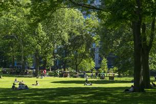 新緑が生い茂るセントラルパークの芝生の広場で寛ぐ人々。小道沿いに客待ちのペディーキャブが並びますの写真素材 [FYI04606174]