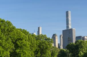 セントラルパークに生い茂る新緑の木々の後ろにそびえ立つミッドタウンマンハッタンの摩天楼の写真素材 [FYI04606196]