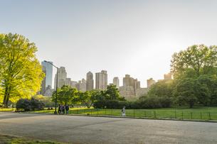 夕日に照らされる芝生の広場に育つ新緑の木々の間の小道を行き交う人々とミッドタウンマンハッタンの摩天楼の写真素材 [FYI04606232]