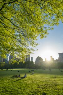 ミッドタウンマンハッタンの摩天楼に沈む夕日に照らされる生い茂る新緑とセントラルパークの芝生の広場 シープメドウで寛ぐ人々の写真素材 [FYI04606235]