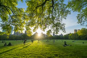 ミッドタウンマンハッタンの摩天楼に沈む夕日に照らされる生い茂る新緑とセントラルパークの芝生の広場 シープメドウで寛ぐ人々の写真素材 [FYI04606243]