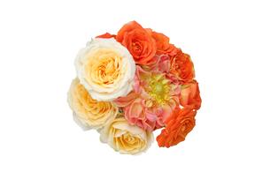 ダリアと薔薇の花束の写真素材 [FYI04606249]