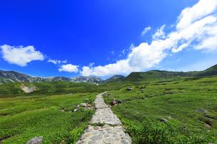 夏の立山 天狗平より雄山などの山々と高原バスの写真素材 [FYI04606284]