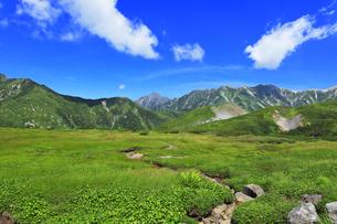 夏の立山 天狗平より剣岳などの山々の写真素材 [FYI04606285]